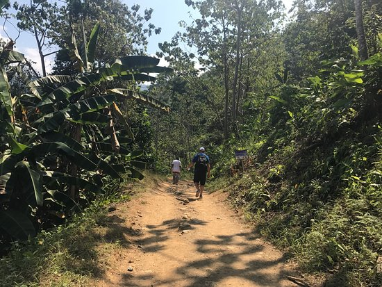 Dominical, Costa Rica: photo9.jpg