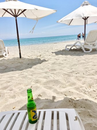 Sharks Beach Bar El Yaque Photo