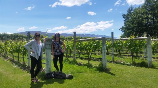 Appellation Central Wine Tours: A stunning day out among the vines