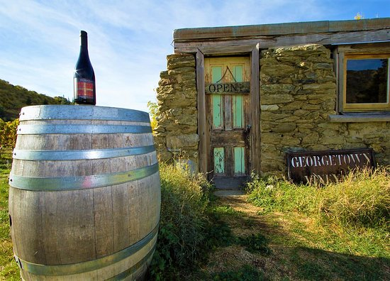 Appellation Wine Tours: Georgetown- Cellar door with character
