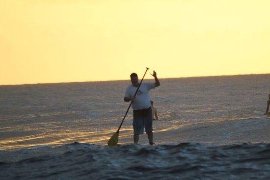 Surf 787: sunset