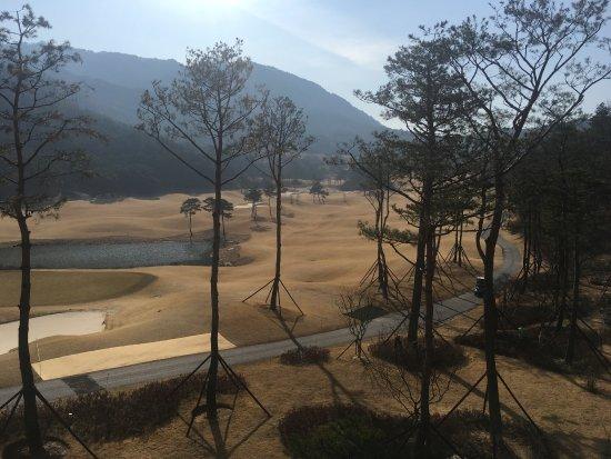 Suncheon, Corea del Sur: photo5.jpg