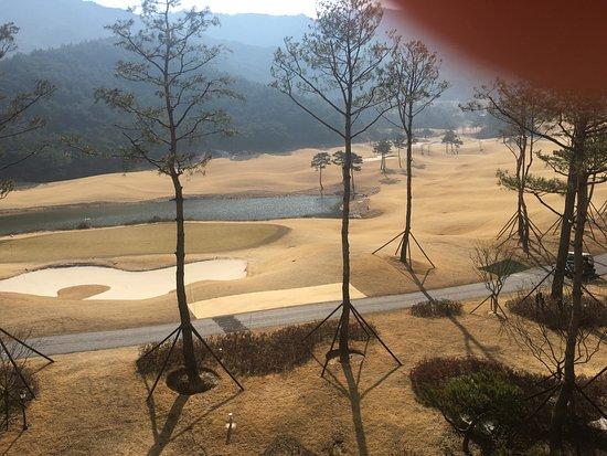 Suncheon, Corea del Sur: photo6.jpg