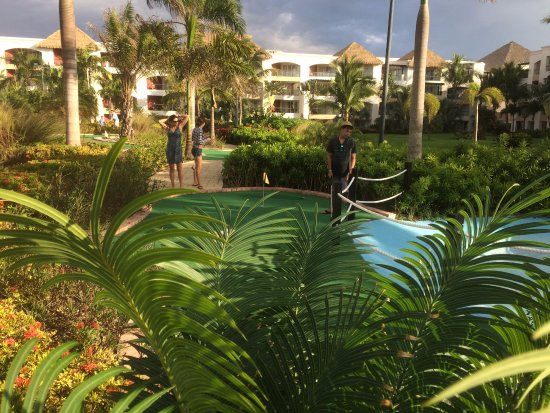 miniature golf (building 5B garden view) - Picture of Hard Rock ...