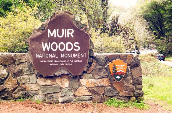 Private Muir Woods and Wine Country...