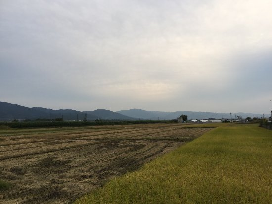 Tenri, Japón: IMG_1384_large.jpg
