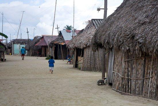 Bilde fra Isla Tigre