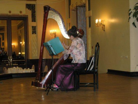 Гостиница Метрополь Москва: Exquisite harp playing