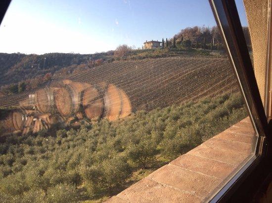 San Venanzo, Italy: Panorama dalla Barricaia