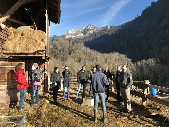 Habkern, Switzerland: Führung im Stall des Hofes