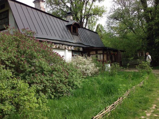 Избушка на территории - Picture of Strakhovo, Tula Oblast