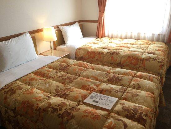 Toyoko Inn Kumamoto Ekimae