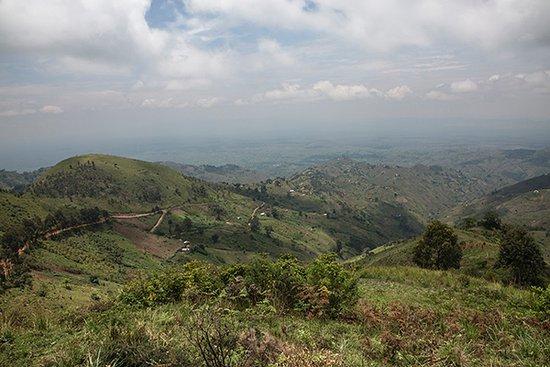 North Kivu Province, Demokratyczna Republika Konga: Kyondo