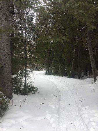 Pointe-Verte, Canada : Sentiers enneigés du parc.
