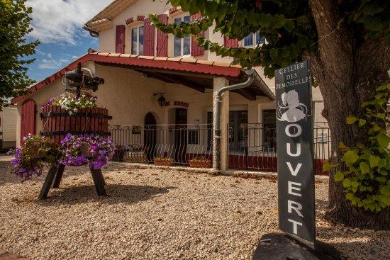 Saint-Laurent-de-la-Cabrerisse, France: immergez-vous le temps d'un instant dans le monde du vin et découvrez toutes ses subtilités