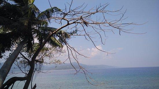 Ross Island: View of Coastline