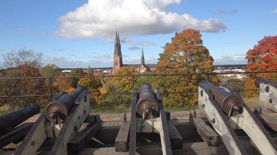 Uppsala, Svezia: Dónde apuntan los cañones.