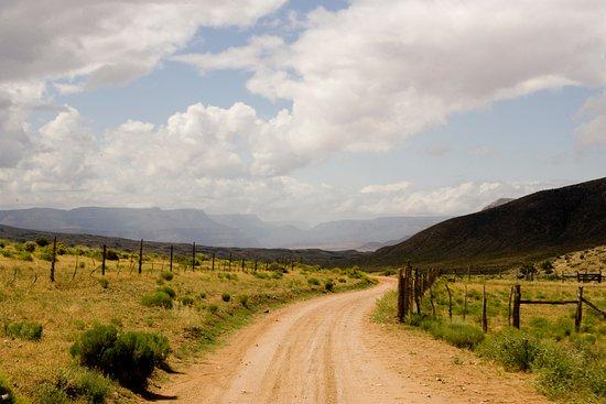 Landscape - Picture of Bar 10 Ranch, Grand Canyon-Parashant National Monument - Tripadvisor