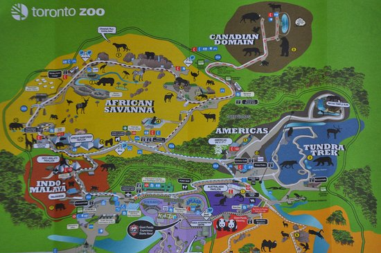 Toronto Zoo Map Picture of Toronto Zoo Toronto TripAdvisor