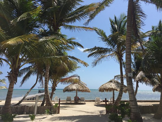 Cocotal Inn & Cabanas: view from the front of the property