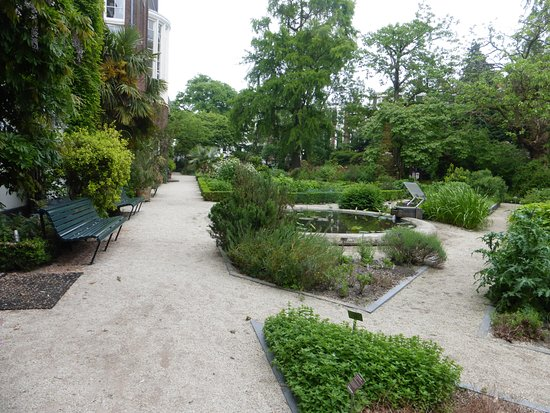 amsterdam botanical garden hortus botanicus photo de jardin botanique amsterdam tripadvisor. Black Bedroom Furniture Sets. Home Design Ideas
