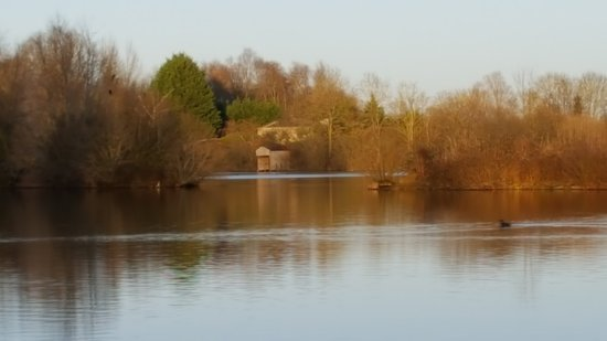 radley lakes thrupp lake trail abingdon all you need to know  radley lakes thrupp lake trail abingdon all you need to know before you go photos tripadvisor