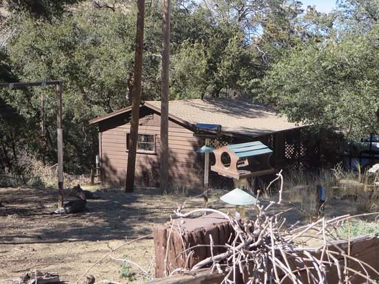 Madera Canyon, AZ: This is the cabin we stayed in as viewed from the group viewing area a little bit up the road.