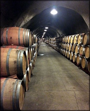 Rutherford, CA: Our special tour of Inglenook caves