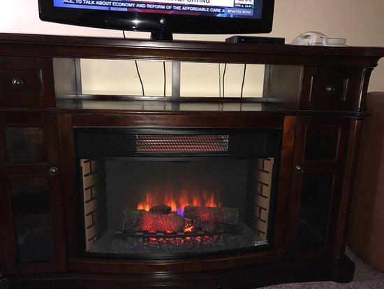 Peach Tree Inn: Fake fireplace/room heater