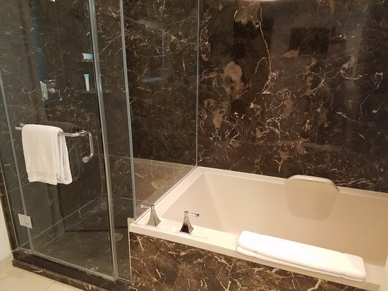 Walk in shower and very large Tub - Picture of Delano Las Vegas, Las ...