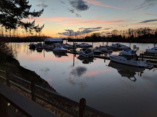 Delta, Canada: view