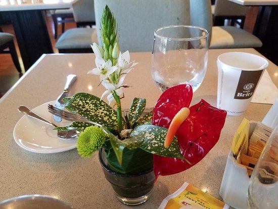 Hilton Garden Inn Liberia Airport Breakfast Buffet Table Decor
