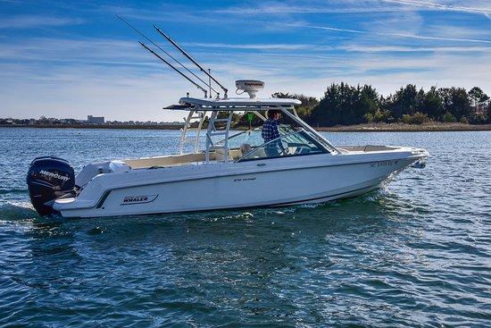 Sea Gate Boating: 2017 Boston Whaler 270 Vantage For Rent!