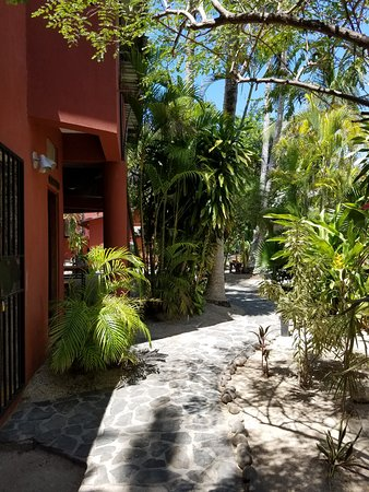 Hotel RipJack Inn: Walkway