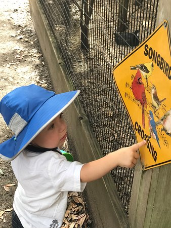 Jupiter, FL: Our Grandchild loves coming to see all the animals at this beautiful facility. The birds are his