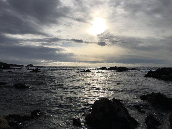 Asilomar State Beach 사진