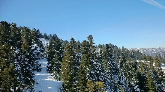Parnassos, Greece: Χιονοδρομικό κέντρο Φτερόλακας Παρνασσού