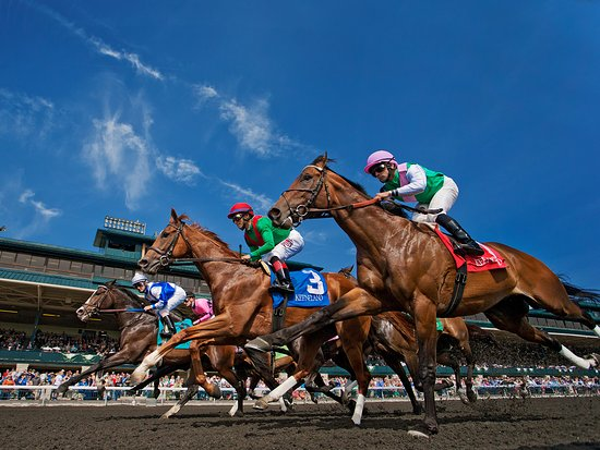 Things To Do in The Thoroughbred Center, Restaurants in The Thoroughbred Center