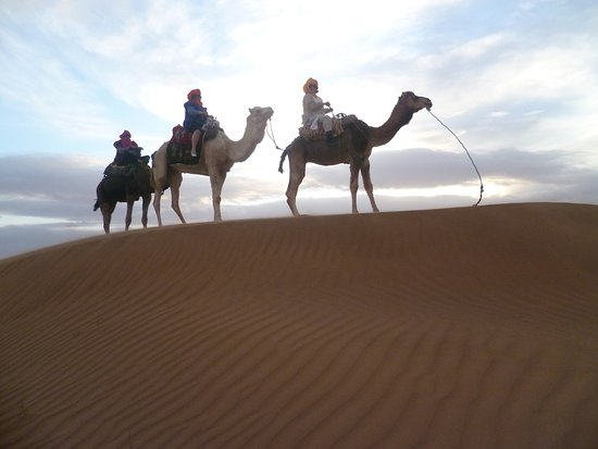 Aspects Of Morocco Day Tours : on our way to the camp...