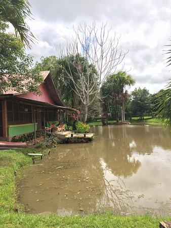 Amazon Tropical Garden Hostel