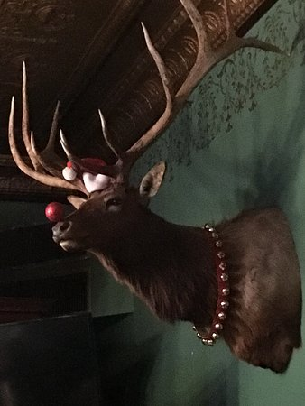 Burlington, WI: Mr Moose ready for the Holidays. :) - Near the bar.
