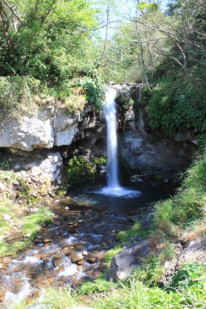 Buena Vista Lodge: Waterfall close by