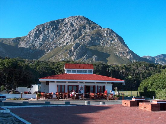 Hermanus, Sør-Afrika: Restaurants