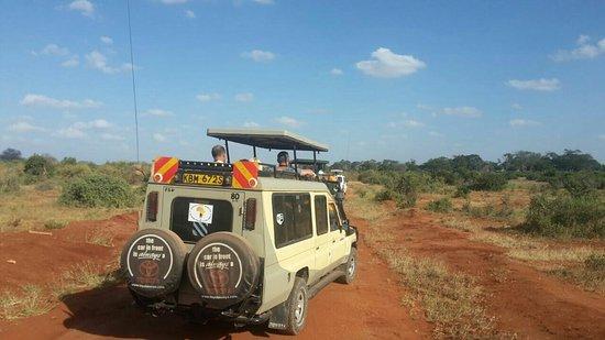 Kalume Safari