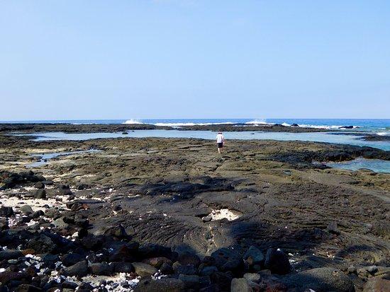 Honaunau, HI: Lava area.