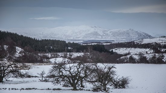 Newtonmore, UK: View from Fernlea House - Highland Holiday Cottages - (c)Alex Miller Studio3