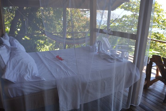 Lookout Inn Lodge: Our 'open air' bed in the Monkey House.