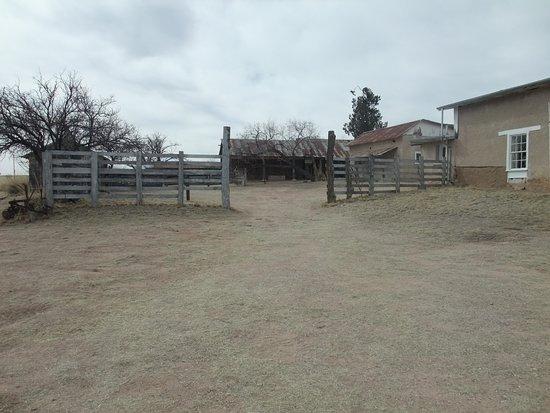 Sonoita, AZ: main area
