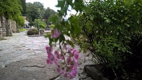 Balchik, Βουλγαρία: Ботанический сад