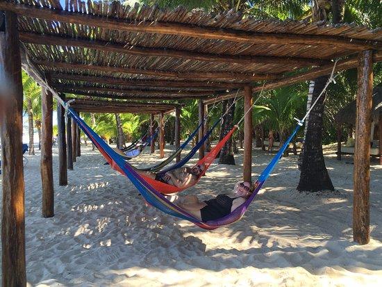 Fury Catamarans - Tours: Hammocks on the beach!